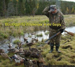 Охота на уток.jpg
